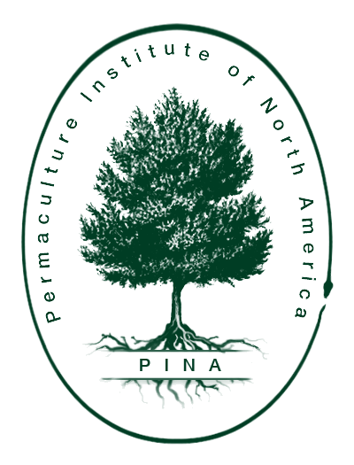 pina-logo-transparent-copy
