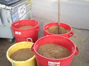Spent Grain From Brewery