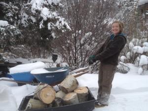 Winter Wheelbarrow